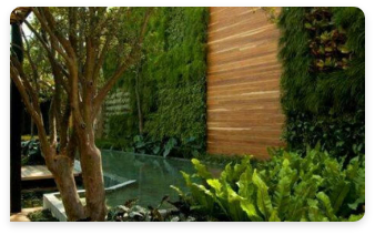Muro verde residencial